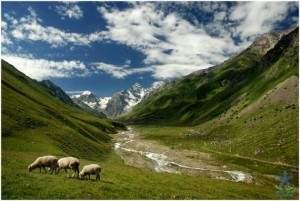 Ключ к процветанию Кавказа в сфере образования и культуры