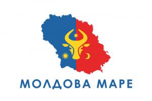 Emblema_NPS_N-300x200
