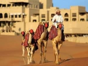 Wueste_Camel-trekking-in-nomadic-tradition_by_Qasr_Al_Sarab-WP