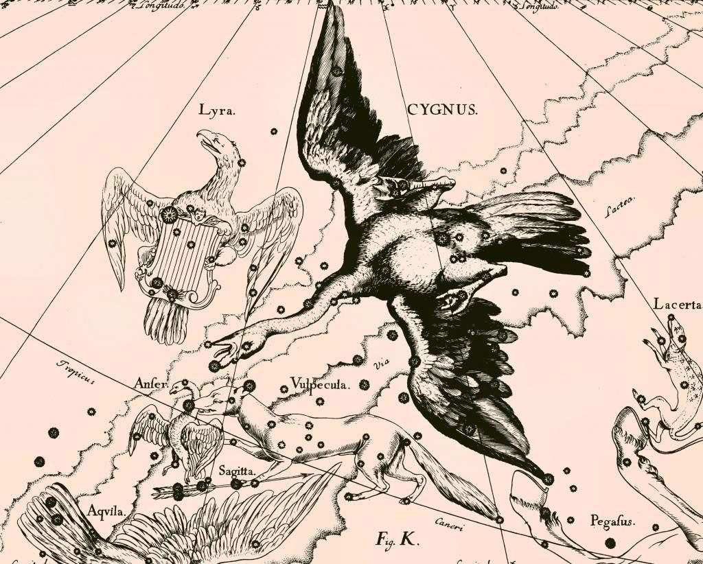 cygnus_constellation_uranographia_big